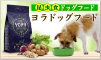【ヨラドッグフード】お肉が苦手な愛犬へ昆虫フードという新提案
