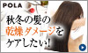 【POLA】頭皮と髪の大人のためのヘアケア【フォルム】