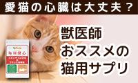 愛猫の心臓は大丈夫?獣医師推奨サプリ「毎日健心コエンザイムQ10&フランス海岸 松」