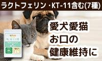 【ペット用サプリメント】お口の健康維持に「毎日口健 ラクトフェリン&KT-11」