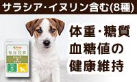 【犬用サプリメント】体重・糖質・血糖値の健康維持に「毎日習慣 サラシア&イヌリン」