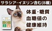 【猫用サプリメント】体重・糖質・血糖値の健康維持に「毎日習慣 サラシア&イヌリン」