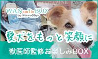 愛犬の健康を考えたい方必携。季節を愛犬と楽しむ獣医師監修の【WAN Smile BOX】
