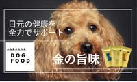 発売当日2,000食達成!!人も食べられるドッグフード【金の旨味】