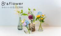 花のある暮らしをもっと身近に、続けやすく【&flowerのお花の定期便】